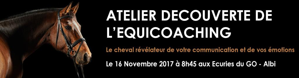 atelier equicoaching cci tarn albi cheval